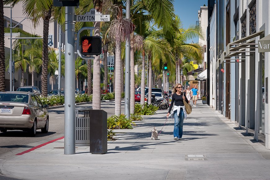Taking a walk down Rodeo Drive